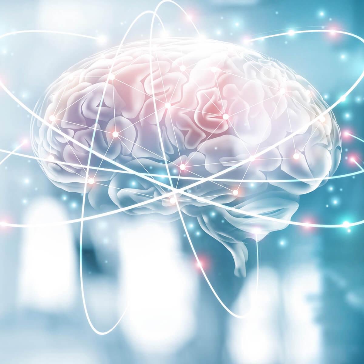 Brain-Check